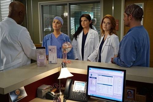 Greys Anatomy 13 Streaming Anticipazioni Trama E Spoiler