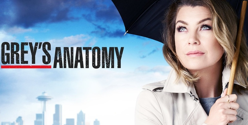 Grey's Anatomy 13: streaming, anticipazioni, trama e spoiler tredicesima stagione